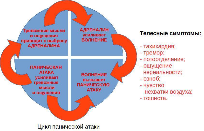 Цикл панических атак